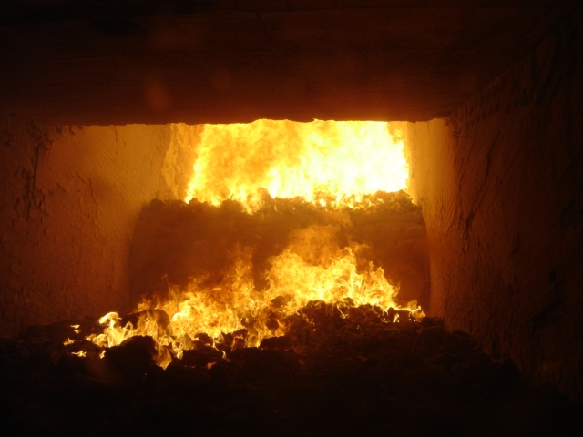 Деньги и яд: чиновники и мусоросжигальщики — диоксиновый брак по расчёту
