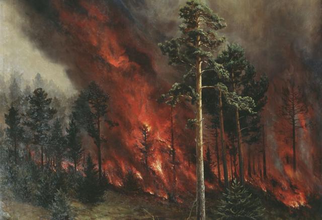 В Дагестане вторые сутки горит лес, площадь возгорания достигла 50 гектаров