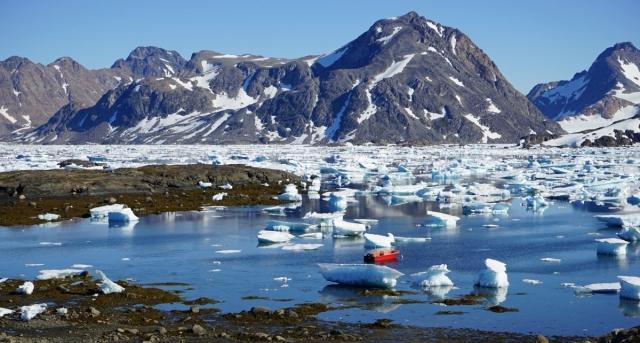 Ученые рассказали об опасности глобального потепления для животных
