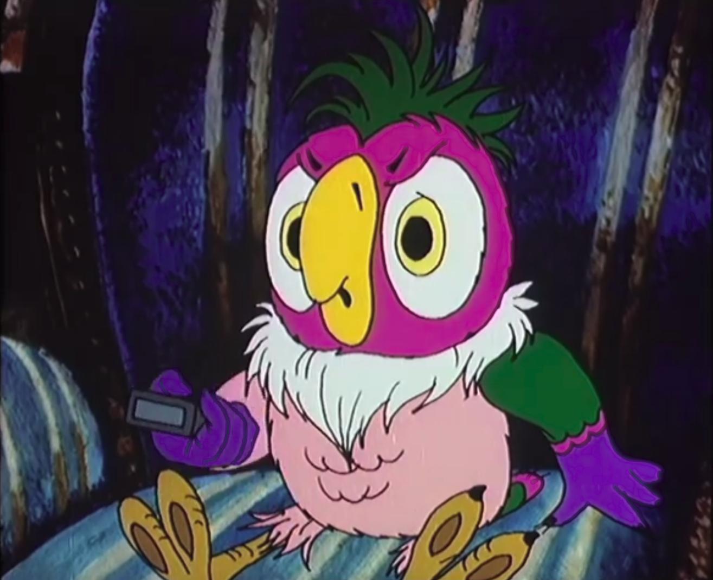 картинки попугай кеша сейчас блогер переживает