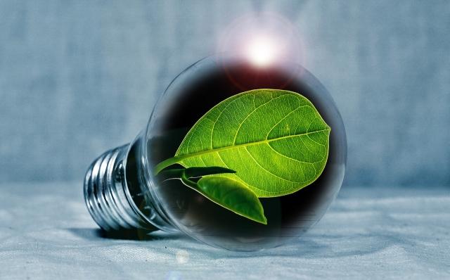 В ЕАЭС планируют активнее использовать «зеленую» энергетику