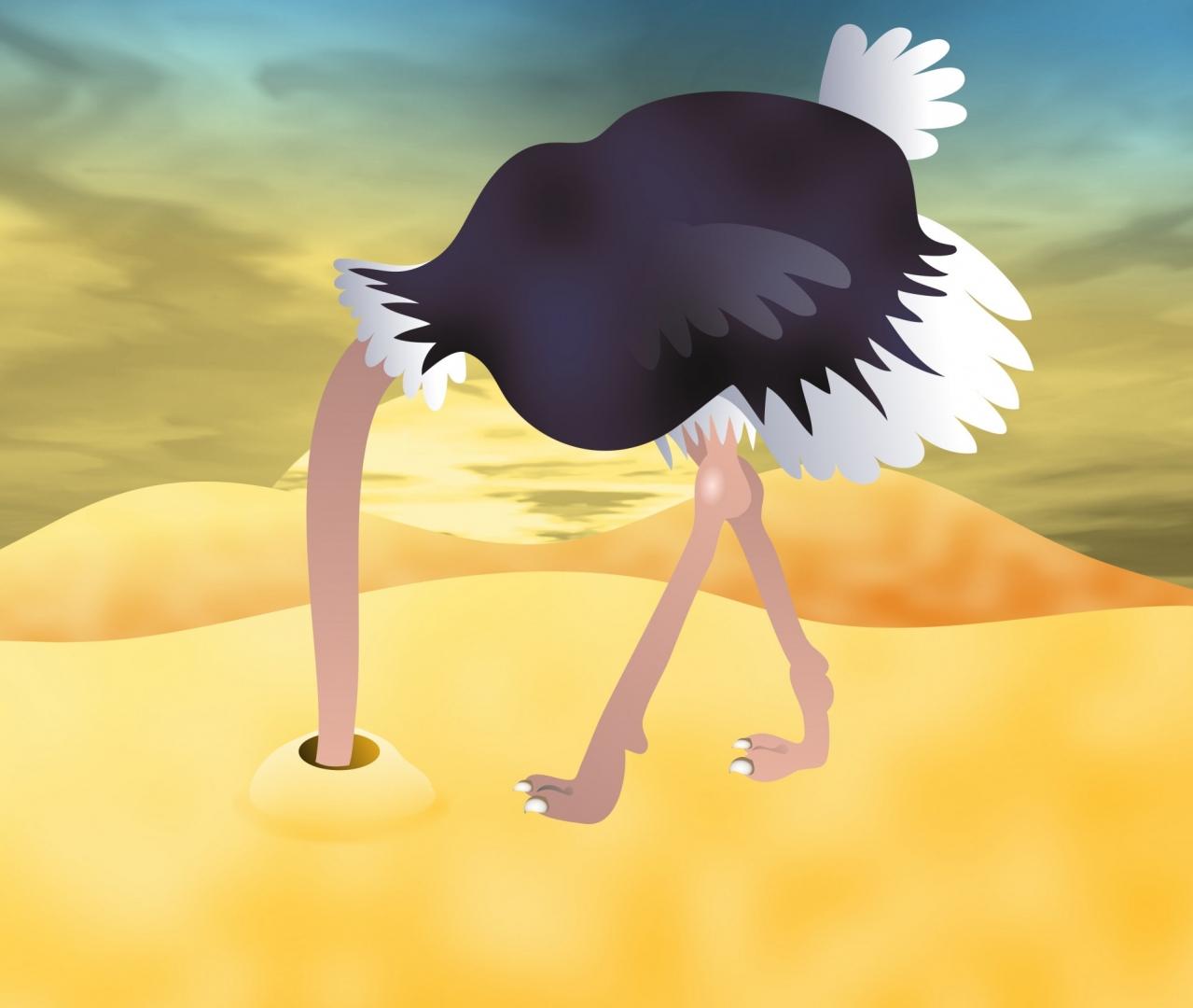 достойных официальных картинки страуса головой в песок провести