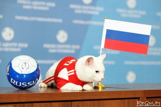 Кот Ахилл из Эрмитажа предсказал победу России в матче со сборной Египта