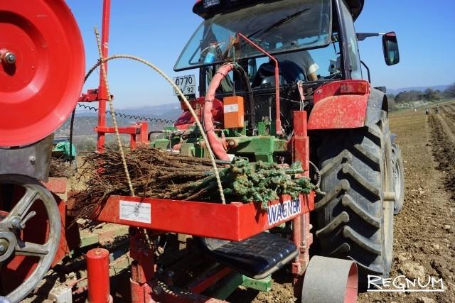 В Подмосковье планируют установить нулевую ставку по единому сельхозналогу
