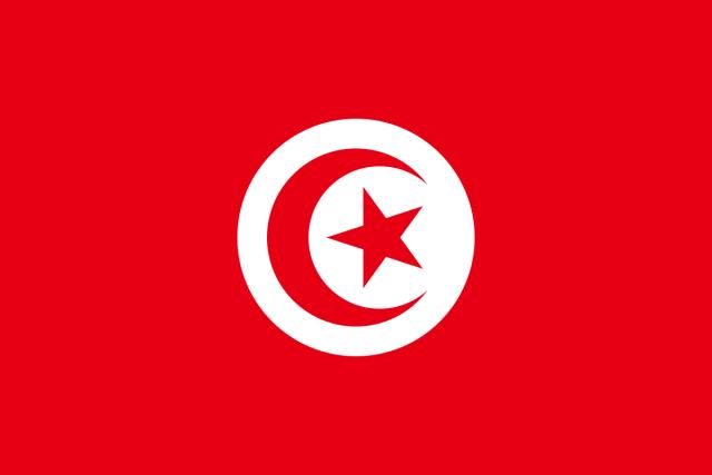После 16 минут на поле для вратаря Туниса мундиаль закончен