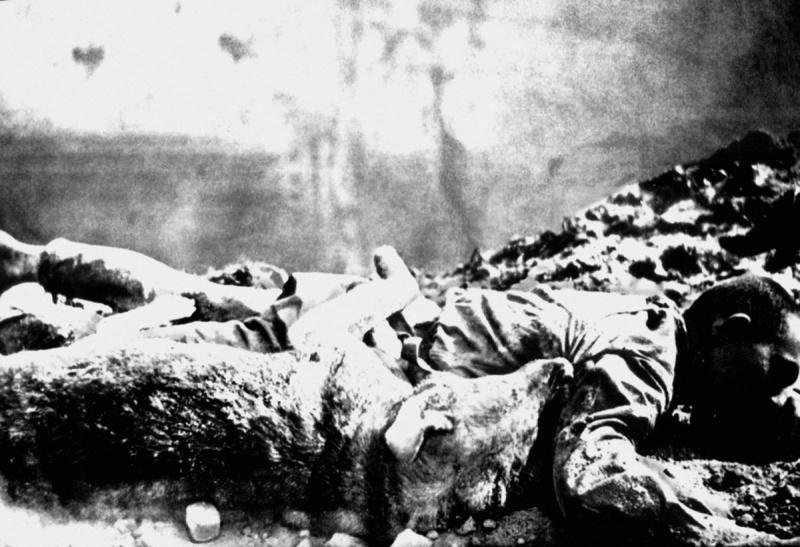 Погибшие в Брестской крепости красноармеец и его служебная собака