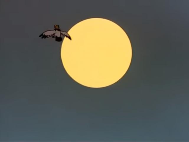Полная Луна затмит первый летний звездопад