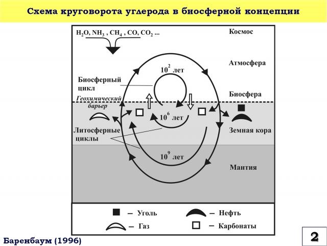 Рис. 2. Схема круговорота углерода в Биосферной концепции
