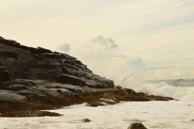 Норвежские учёные предрекли потепление Баренцева моря