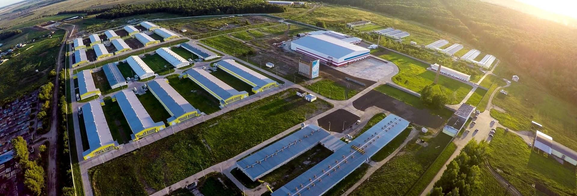 Сайт компании агрохолдинг ресо страховая компания официальный сайт ярославль