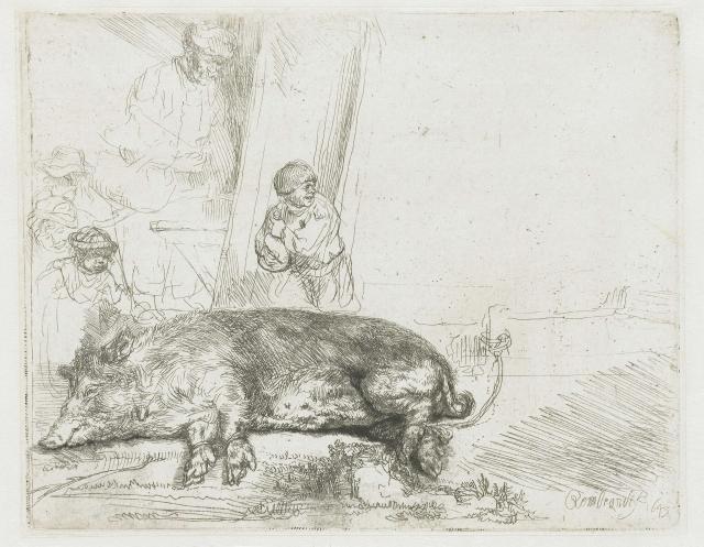 Рембрандт Харменс ван Рейн. Свинья. 1643