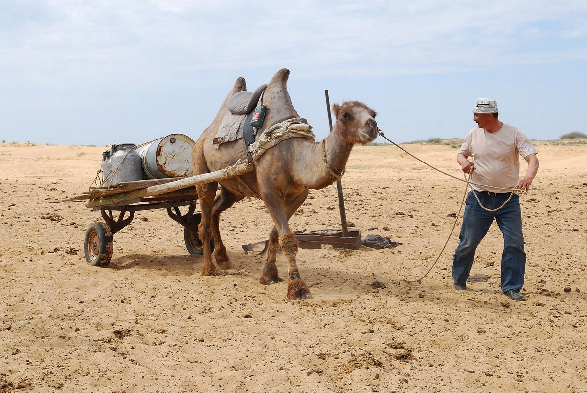 Жанзак Мусаев и Яша. Традиционный ритуал для обоих – поход на водопой за питьевой водой для обитателей Таутобе