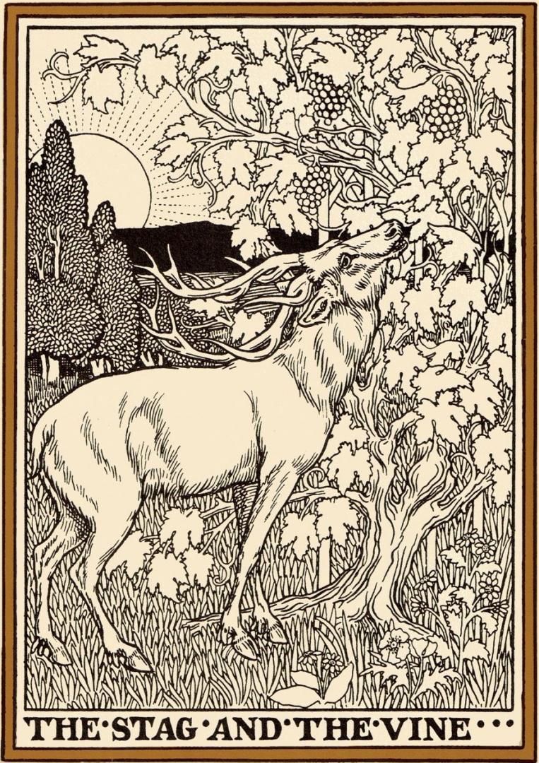 Перси Дж. Биллингхерст. Иллюстрация к басне Жана де Лафонтена «Олень и виноградная лоза». 1899