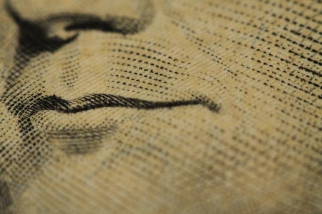 За полгода жители Белоруссии продали миллиард долларов наличными