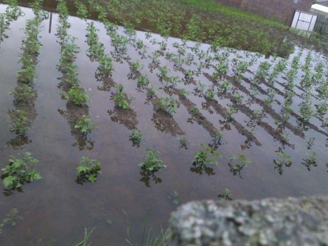В Свердловской области ливневые дожди затопили часть Ивделя