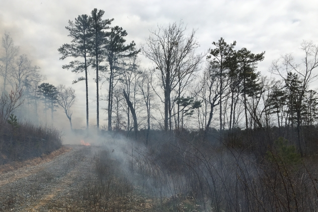 Роспотребнадзор: В Якутске концентрация вредных веществ в воздухе — в норме