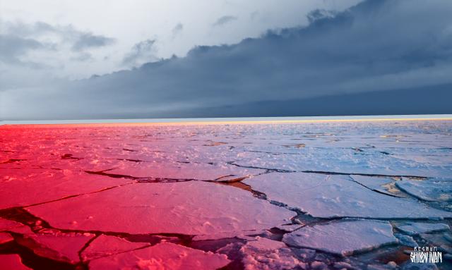 The Hill: какие дипломатические возможности таит Арктика для США и России?