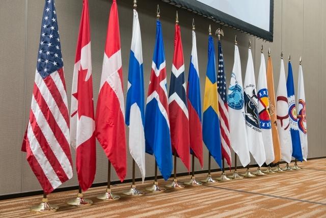Флаги стран участниц Арктического совета