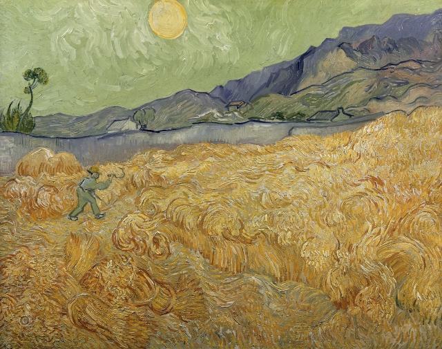 На Украине пересмотрят госстандарт на пшеницу