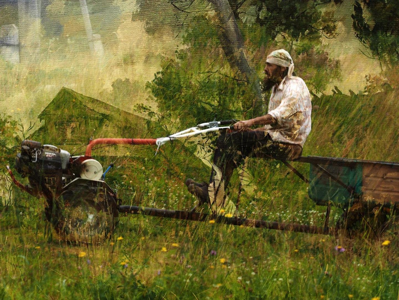 Заготовка кормов для скотины