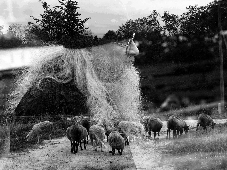 Пастырь овец своих