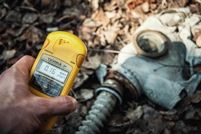 Чернобыльские ягоды: полиция задержала собирателей радиоактивной черники