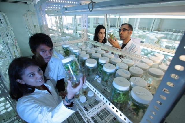 79% жителей РФ считают продукты с ГМО опасными — ВЦИОМ