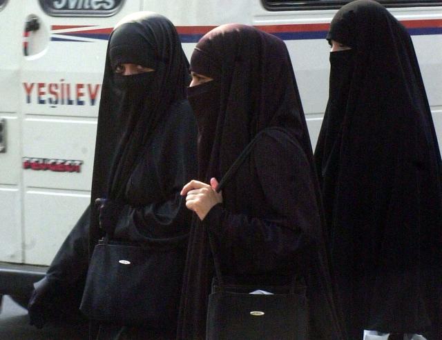 В Дании запретили скрывать лицо в общественных местах