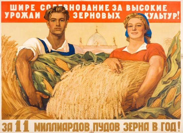 В Воронежской области собрано два миллиона тонн зерна