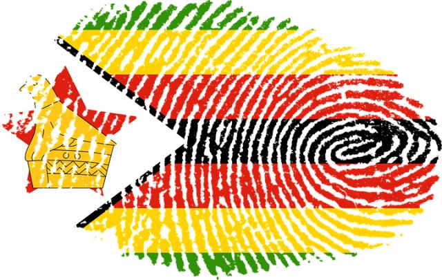 МИД РФ призвал оппозицию Зимбабве одуматься