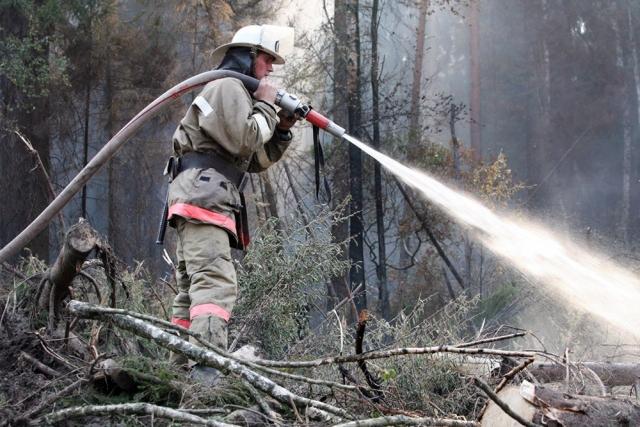 Площадь лесных пожаров в Красноярском крае сократилась до полумиллиона га