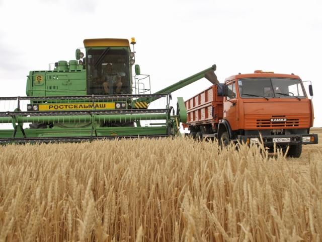 Тамбовские аграрии планируют собрать 3,7 млн тонн зерновых