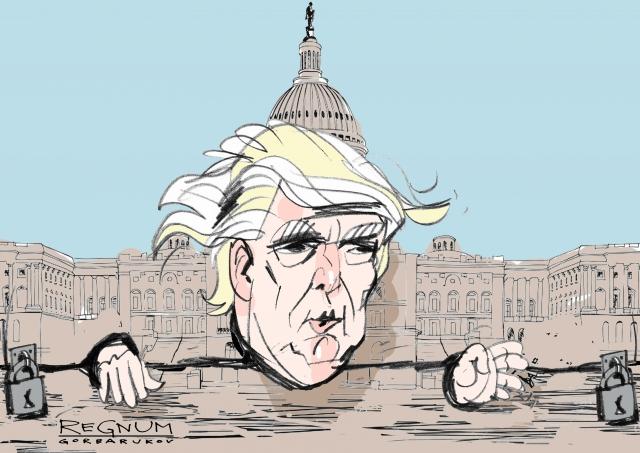 Колодки. Дональд Трамп