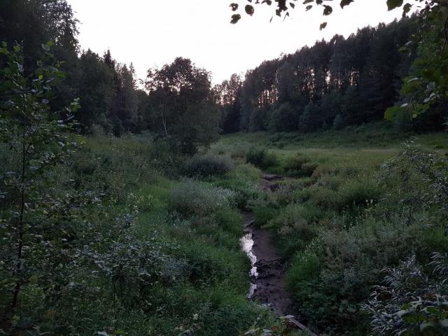 Долина речки Шипилихи — здесь белые устроили запруду чтобы заболотить подходы к своим укреплениям