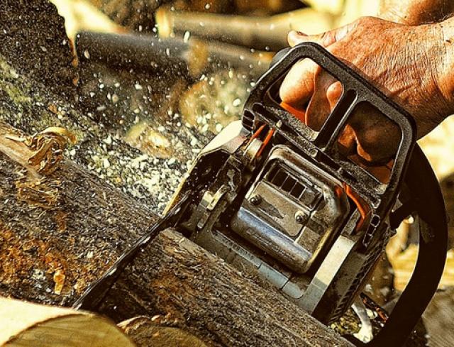 Чемпионат «Лесоруб XXI века» проходит в Архангельской области