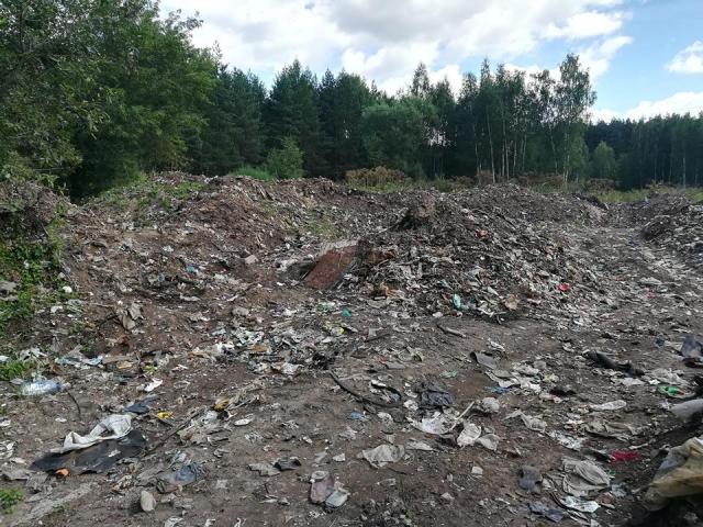 Под Ярославлем нашли нелегальную свалку размером с футбольное поле