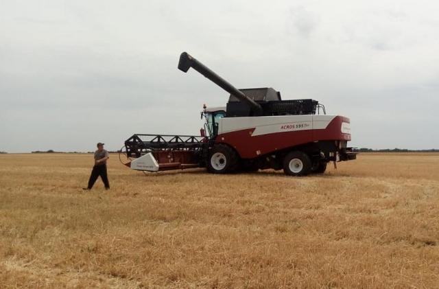 Урожай зерновых в Крыму по сравнению с 2017 годом снизился в два раза
