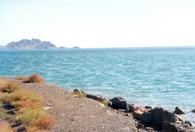 В Казахстане призвали совместно решать экологические проблемы Каспия