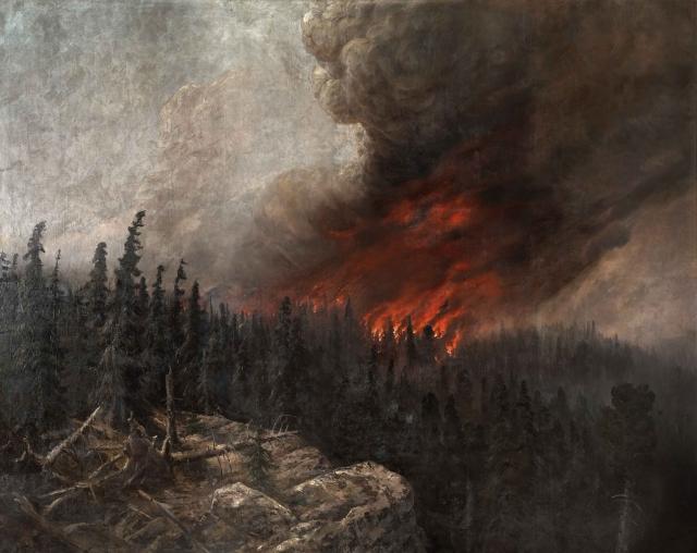 Площадь лесных пожаров в Крыму выросла в 10 раз