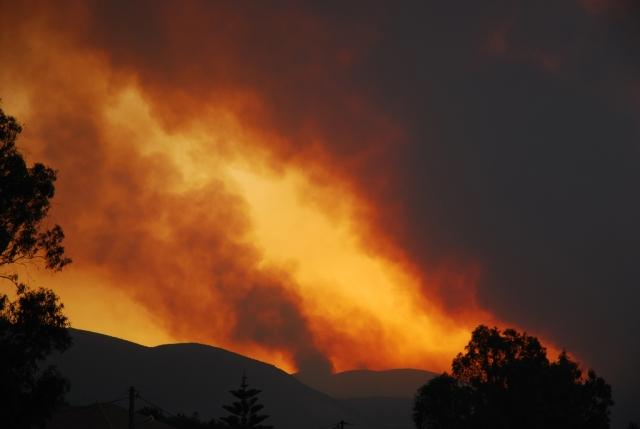 На греческом острове Эвбея из-за пожаров введен режим ЧС