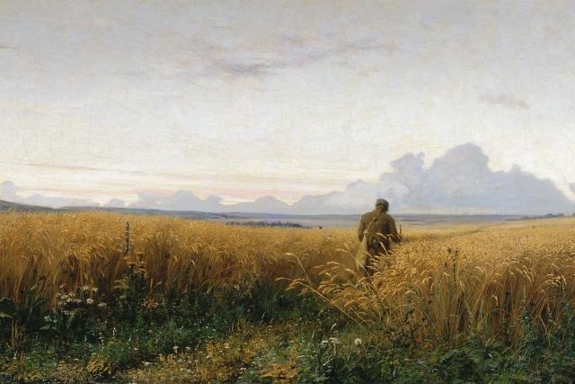 В России посевы ржи сократились до исторического минимума