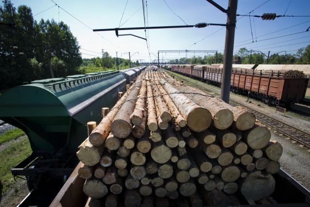 Вагон с древесиной