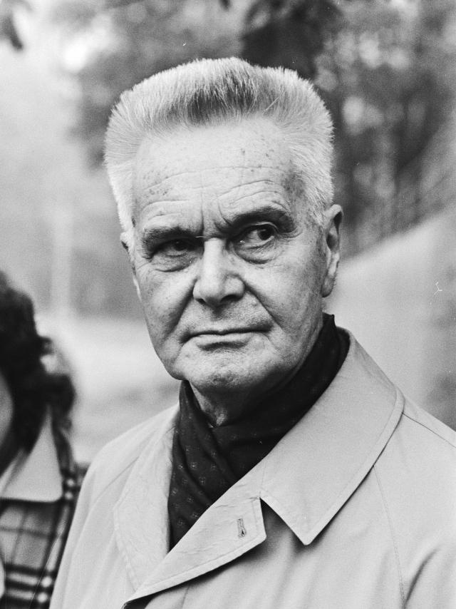 Ян Тинберген