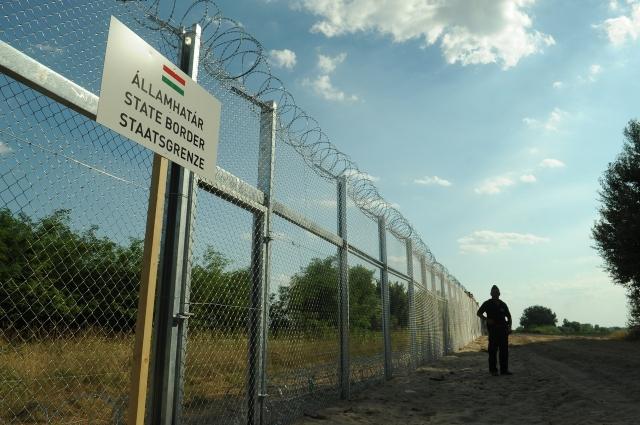 На страже венгерских рубежей
