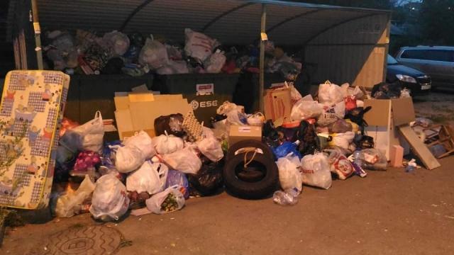 «Хартия» в Ярославле: «Объем мусора превысил наши ожидания»