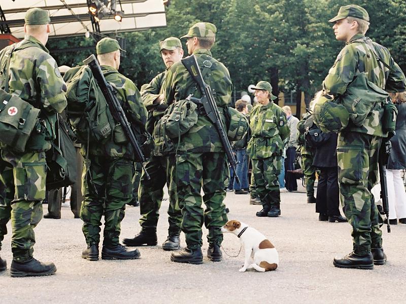 Шведские солдаты