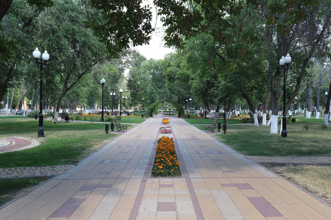 Зеленая зона на Московском шоссе от Масленникова до Революционной. Самара