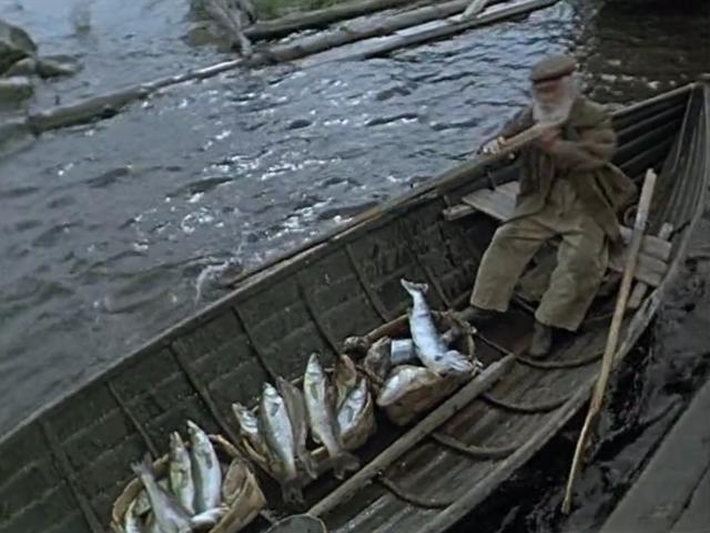 Россия одобрила международный запрет на ловлю рыбы в Арктике