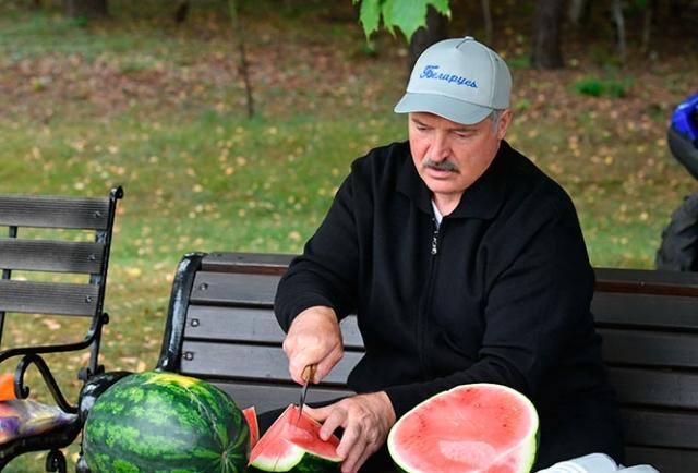 Лукашенко похвастался собранным урожаем