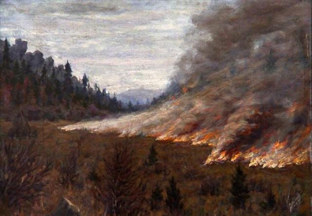 В Красноярском крае действуют 17 лесных пожаров